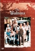 TV series The Waltons poster