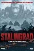 Stalingrad (mini-serial) cast, synopsis, trailer and photos.