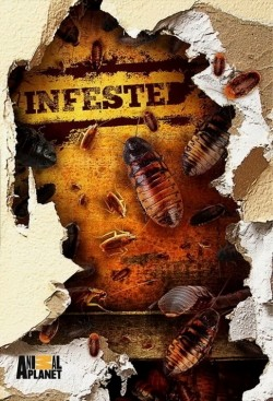 Infested! cast, synopsis, trailer and photos.