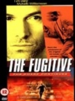 TV series The Fugitive poster